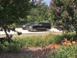 There will be fewer flowers along N.C. highways as the Department of Transportation cuts back on planting.