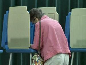 Voting, vote