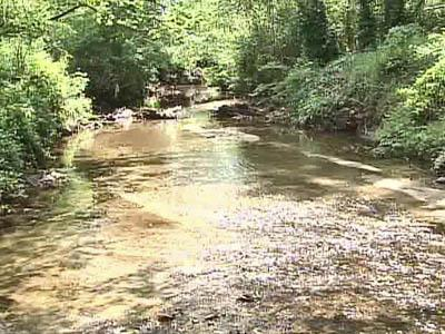 PCBs contaminate Walnut, Rocky Branch creeks