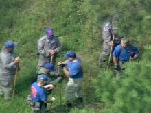 A search and rescue team from Johnston County joined Edgecombe County authorities Wednesday in searching a rural area near N.C. Highway 33 in Whitakers.