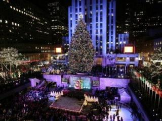 The Rockefeller Center Christmas tree is lit in New York, Wednesday, Nov. 28, 2007. This is the 75th annual lighting of the tree, which weighs 8 tons, stands 84 feet tall and is decorated with 30,000 energy-efficient lights. (AP Photo/Seth Wenig)