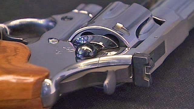 Handgun generic, revolver generic, gun control