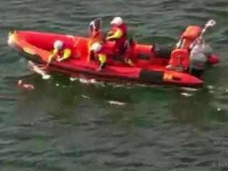 RAW: Rescuers pull small dog from sea