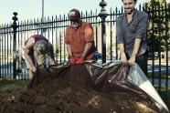 IMAGES: Buried Treasure in the City's Soil? It's the Soil Itself