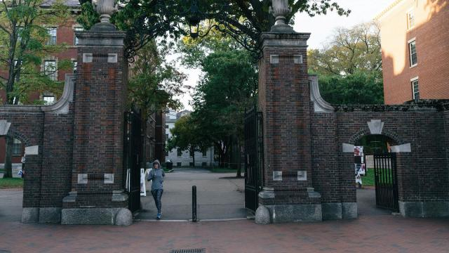 The Harvard University campus in Cambridge, Mass., Oct. 26, 2018. A federal case against Harvard has brought to light many of its closely guarded admissions secrets. (Tristan Spinski/The New York Times)