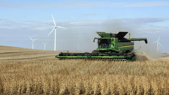 Harvesting soybeans near a wind farm south of Luverne, N.D., Oct. 29, 2018. Voters in red states largely shrugged off concerns about the economic effect of President Trump's global trade war, throwing their support behind Republican candidates who embraced the administration's protectionist agenda despite attempts by Democrats to turn it into a wedge issue. (Dan Koeck/The New York Times)