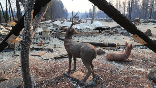Deer statues at Ridgewood Mobile Home Park in the aftermath of the Camp Fire in Paradise, Calif., Nov. 12, 2018. The Camp Fire, which killed at least 29 people in Paradise, has already burned more than 110,000 acres and is only about 25 percent contained. (Jim Wilson/The New York Times)