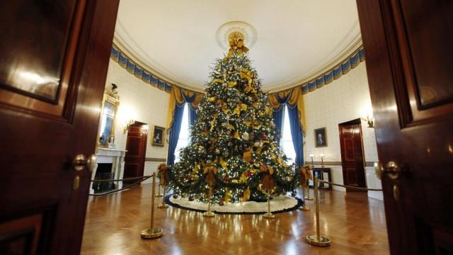 FILE -- A Christmas tree, trimmed with energy-saving LED lights and recycled ornaments, at the White House in Washington, Dec. 2, 2009. From consumers exploring less wasteful ways to decorate and entertain, to companies touting eco-friendly presents, more and more people are preparing for the holidays with the environment in mind. (Luke Sharrett/The New York Times)