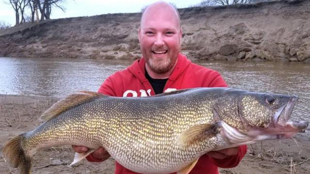Tom Volk with the nearly 17-pound walleye he caught along the Heart River in Mandan, N.D. (Photo: via North Dakota Game and Fish Department)