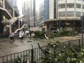 IMAGE: 12 dead as Typhoon Hato lashes Macau, southern China