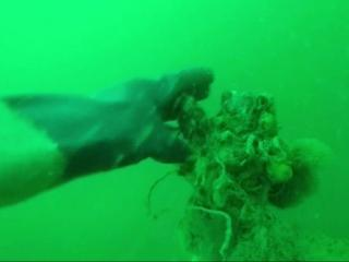 Divers find wrecked German sub from WWII