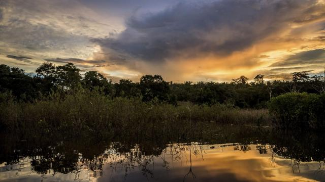 FILE -- Sunset on the Tapajós River, deep in the Amazon rainforest, in Brazil, March 25, 2018. Scientists are warning that if human beings continue to mine the world's wildernesses for resources and convert them into cities and farms at the pace of the previous century, the planet's few remaining wild places could disappear in decades. (Meridith Kohut/The New York Times)