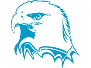 Wake Tech's Eagle logo