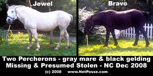 A poster on NetPosse.com, featuring two Percheron draft horses believed to have been stolen from a pasture at 1120 Seths Way in Johnston County Wednesday, Dec. 3. The missing horses are Jewel, a 12-year-old gray mare, and Bravo, a 9-year-old black gelding.