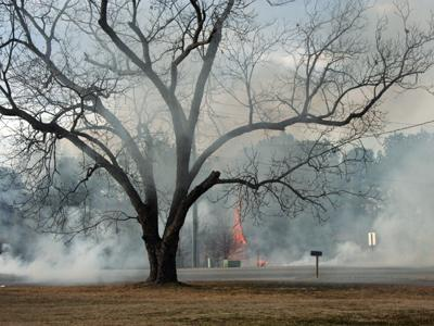 The brush fire broke out Sunday afternoon near Amelia Church Road in Clayton. (Photo courtesy of Jennifer Montgomery)
