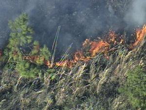 Sky 5 spotted flames from a wildfire in Johnston County Friday afternoon.