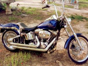 """A 2007 Harley Davidson motorcycle, license plate """"CROACH"""", was stolen from a house in the 11000 block of Wilkins Road, in northern Durham County, July 20, 2009. (Photo courtesy of the Durham County Sheriff's Office)"""