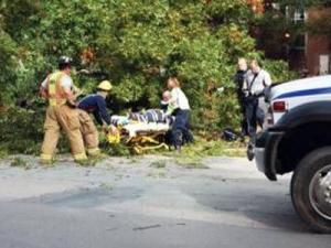 Paramedics help a UNC student who was struck by a falling tree on campus on Nov. 2, 2009. (Courtesy of the Daily Tar Heel)