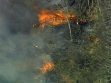 Raw video: Knightdale brush fire