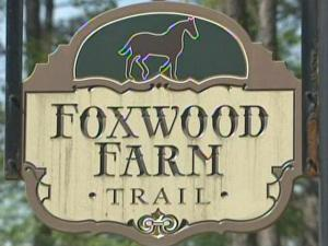 Thirteen horses died in a barn fire at Foxwood Trail Farm, 2006 Marions Ford Road, early Thursday, April 8, 2010.