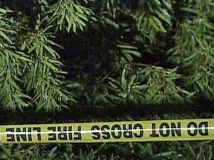 A woman was killed Sunday, May 16, 2010, when a tree fell on her home at 5332 Rock Quarry Road in Raleigh, officials said.