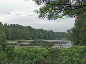 A body was found floating in Mintz Pond in Fayetteville on Aug. 23, 2010.