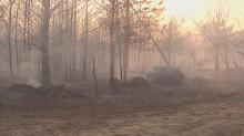 IMAGES: Wind, heat drive wildfire through Halifax County woods