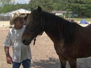 Buddy, the horse who got lost after last week's tornado blew down the fence around his pasture, was reunited with his owner on Friday.