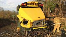IMAGES: Falling tree smashes Franklin school bus