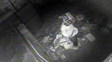 IMAGES: Police: Goldsboro man with box on head stole store's security camera