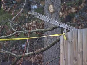 A Raleigh man was seriously injured Saturday while trimming a tree outside of a home, authorities said.