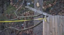 IMAGE: Man injured in tree trimming accident