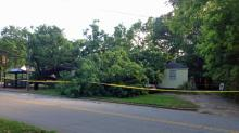 IMAGE: Woman suffers minor injures after tree falls on Raleigh house
