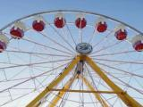 What's new at the NC State Fair?