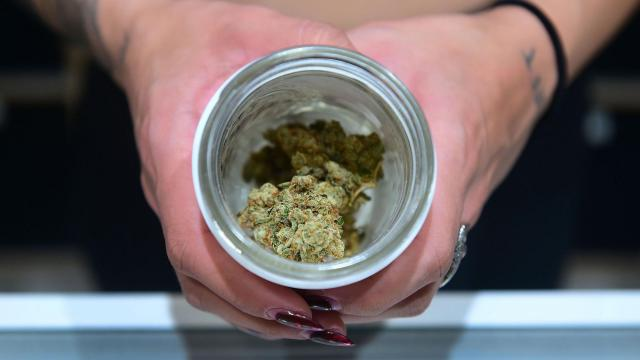 New Jersey and South Dakota vote to legalize recreational marijuana, according to CNN projections