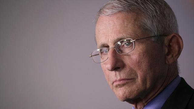 Fauci meets with Biden and transition team