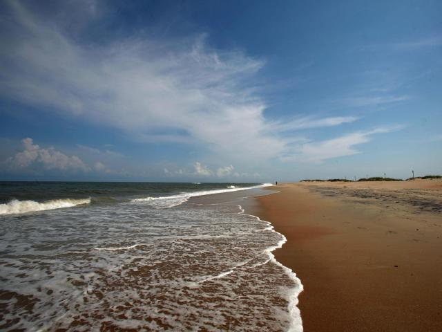 Cape Hatteras National Seashore<br/>Photographer: Anne Johnson