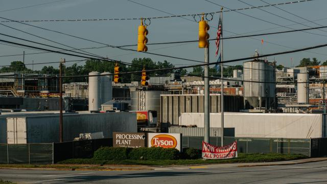 The Tyson processing facility in Wilkesboro, N.C., on May 24, 2020. Hundreds of workers have tested positive for the coronavirus at the plant (Jacob Biba/ Carolina Public Press).
