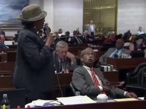 Rep. Alma Adams, D-Guilford, waves a coat hanger during a July 11, 2013, House debate as she argues against legislation adding restrictions to the operation of abortion clinics in North Carolina.