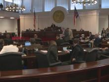Senate debates budget