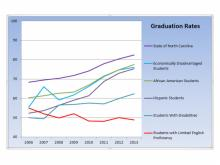 Graduation rates for statwide subgroups from 2006 through 2013.