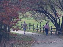Dorothea Dix property in fall