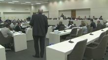 Senate panel debates capping local sales taxes