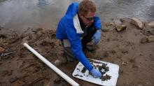 Pete Harrison looks at core samples