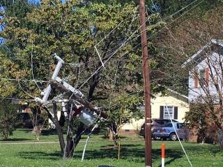 Hurricane Matthew blew down trees and power lines in many parts of the state, including Wilmington.