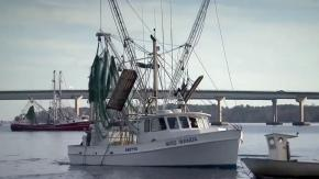 Shrimp trawler
