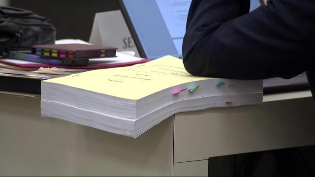 Senate panel reviews proposed budget