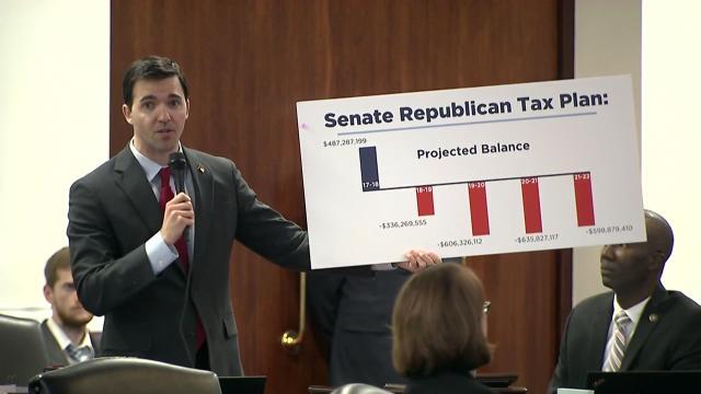 Senate debates proposed state budget