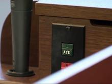 Legislature generic, aye or not vote