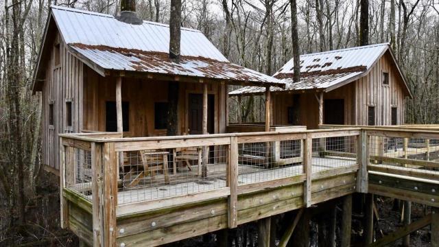 EARNHARDT-8 Cabins